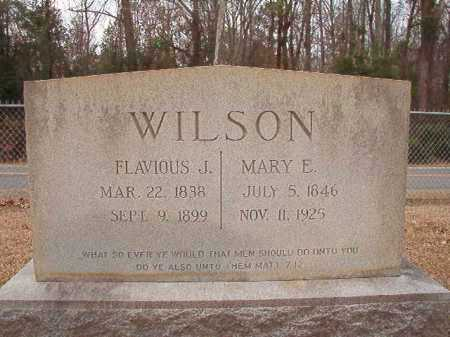 WILSON, FLAVIOUS J - Columbia County, Arkansas | FLAVIOUS J WILSON - Arkansas Gravestone Photos