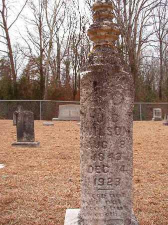 WILSON, J C - Columbia County, Arkansas | J C WILSON - Arkansas Gravestone Photos