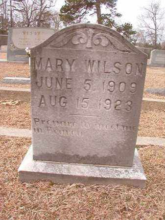 WILSON, MARY - Columbia County, Arkansas | MARY WILSON - Arkansas Gravestone Photos