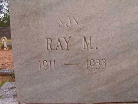 WILSON, RAY M - Columbia County, Arkansas | RAY M WILSON - Arkansas Gravestone Photos
