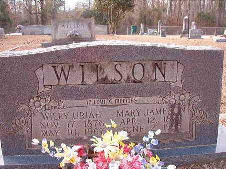 WILSON, WILEY URIAH - Columbia County, Arkansas | WILEY URIAH WILSON - Arkansas Gravestone Photos