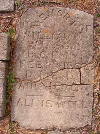WILSON, WILLIAM N - Columbia County, Arkansas | WILLIAM N WILSON - Arkansas Gravestone Photos