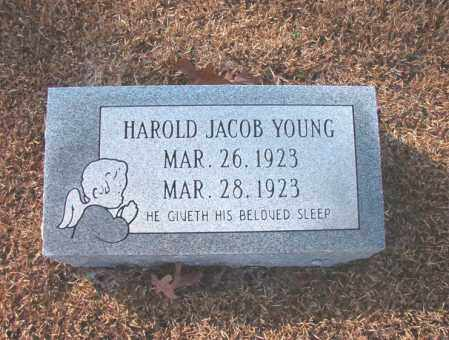 YOUNG, HAROLD JACOB - Columbia County, Arkansas | HAROLD JACOB YOUNG - Arkansas Gravestone Photos