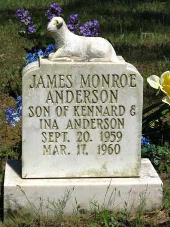 ANDERSON, JAMES MONROE - Conway County, Arkansas | JAMES MONROE ANDERSON - Arkansas Gravestone Photos