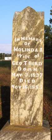 BIRD, MOLINDA A. - Conway County, Arkansas | MOLINDA A. BIRD - Arkansas Gravestone Photos