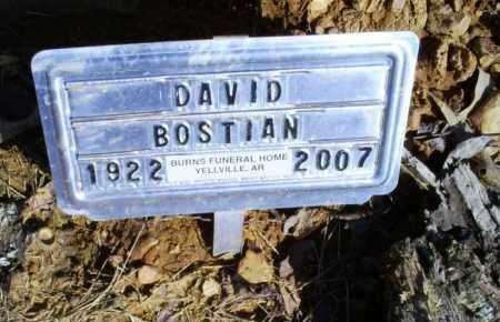 BOSTAIN, DAVID - Conway County, Arkansas | DAVID BOSTAIN - Arkansas Gravestone Photos