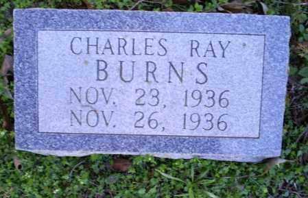 BURNS, CHARLES RAY - Conway County, Arkansas   CHARLES RAY BURNS - Arkansas Gravestone Photos