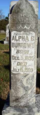BURROWS, ALPHA G - Conway County, Arkansas | ALPHA G BURROWS - Arkansas Gravestone Photos