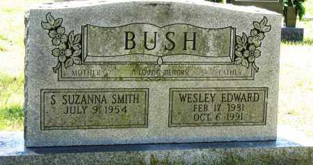 BUSH, WESLEY EDWARD - Conway County, Arkansas | WESLEY EDWARD BUSH - Arkansas Gravestone Photos