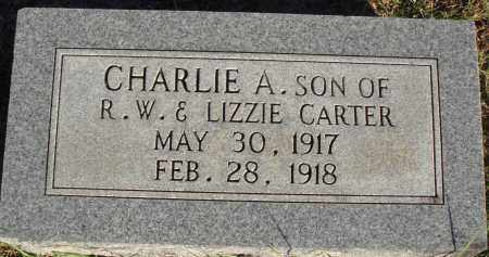 CARTER, CHARLIE A. - Conway County, Arkansas | CHARLIE A. CARTER - Arkansas Gravestone Photos