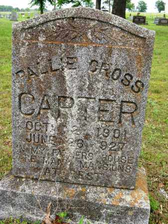 CARTER, PALLIE - Conway County, Arkansas | PALLIE CARTER - Arkansas Gravestone Photos