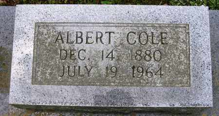 COLE, ALBERT - Conway County, Arkansas | ALBERT COLE - Arkansas Gravestone Photos