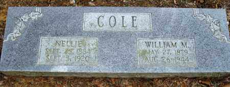 COLE, WILLIAM W - Conway County, Arkansas | WILLIAM W COLE - Arkansas Gravestone Photos