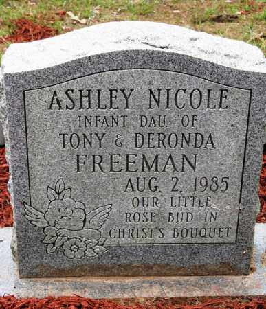 FREEMAN, ASHLEY NICOLE - Conway County, Arkansas | ASHLEY NICOLE FREEMAN - Arkansas Gravestone Photos
