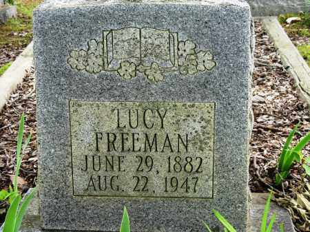 FREEMAN, LUCY - Conway County, Arkansas | LUCY FREEMAN - Arkansas Gravestone Photos