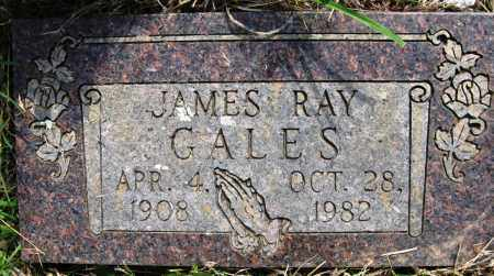 GALES, JAMES RAY - Conway County, Arkansas | JAMES RAY GALES - Arkansas Gravestone Photos