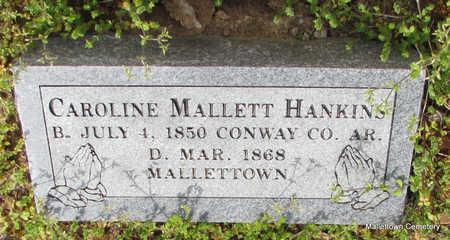 HANKINS, CAROLINE - Conway County, Arkansas | CAROLINE HANKINS - Arkansas Gravestone Photos