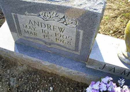 JAMES, ANDREW - Conway County, Arkansas | ANDREW JAMES - Arkansas Gravestone Photos