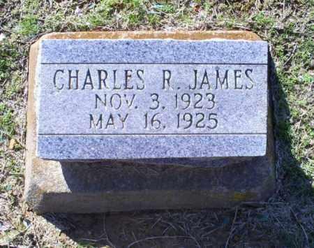 JAMES, CHARLES RAY - Conway County, Arkansas | CHARLES RAY JAMES - Arkansas Gravestone Photos