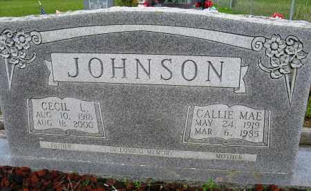 JOHNSON, CECIL L - Conway County, Arkansas | CECIL L JOHNSON - Arkansas Gravestone Photos