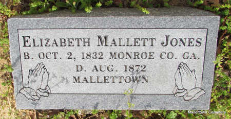 JONES, ELIZABETH - Conway County, Arkansas | ELIZABETH JONES - Arkansas Gravestone Photos