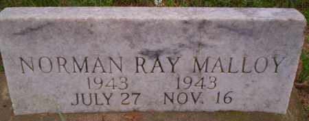 MALLOY, NORMAN RAY - Conway County, Arkansas | NORMAN RAY MALLOY - Arkansas Gravestone Photos