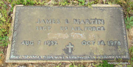 MARTIN  (VETERAN), JAMES LUTHER - Conway County, Arkansas | JAMES LUTHER MARTIN  (VETERAN) - Arkansas Gravestone Photos