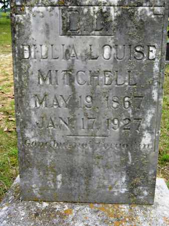 MITCHELL, DILLIA LOUISE - Conway County, Arkansas | DILLIA LOUISE MITCHELL - Arkansas Gravestone Photos