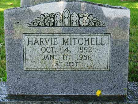 MITCHELL, HARVIE - Conway County, Arkansas | HARVIE MITCHELL - Arkansas Gravestone Photos