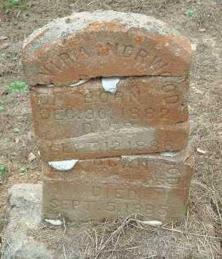 NORWOOD, ELVIRA - Conway County, Arkansas | ELVIRA NORWOOD - Arkansas Gravestone Photos