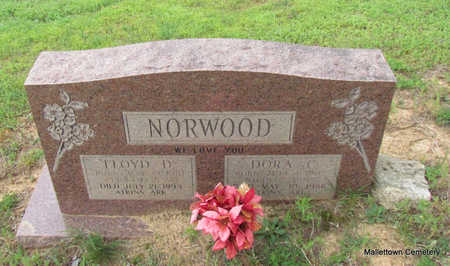 NORWOOD, DORA CAROLINE - Conway County, Arkansas | DORA CAROLINE NORWOOD - Arkansas Gravestone Photos