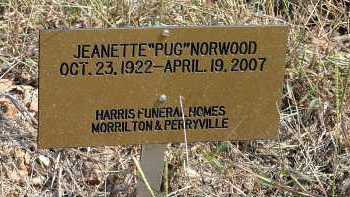 NORWOOD, JEANETTE - Conway County, Arkansas | JEANETTE NORWOOD - Arkansas Gravestone Photos