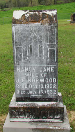 NORWOOD, NANCY JANE - Conway County, Arkansas | NANCY JANE NORWOOD - Arkansas Gravestone Photos