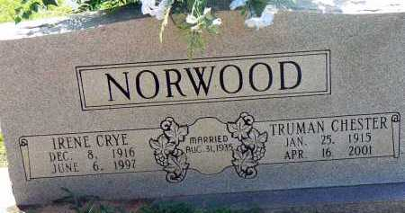 CRYE NORWOOD, IRENE - Conway County, Arkansas | IRENE CRYE NORWOOD - Arkansas Gravestone Photos