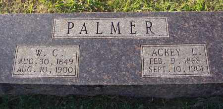 PALMER, W. C. - Conway County, Arkansas | W. C. PALMER - Arkansas Gravestone Photos