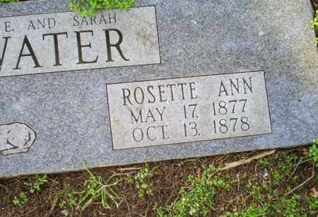 RAINWATER, ROSETTE ANN - Conway County, Arkansas | ROSETTE ANN RAINWATER - Arkansas Gravestone Photos