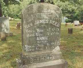 REED, ANNA - Conway County, Arkansas | ANNA REED - Arkansas Gravestone Photos