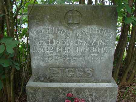 RIGGS, A. W. - Conway County, Arkansas | A. W. RIGGS - Arkansas Gravestone Photos