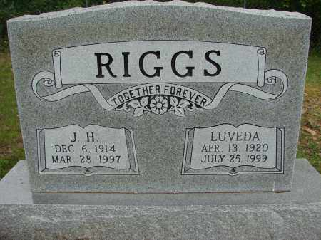 RIGGS, LUVEDA - Conway County, Arkansas | LUVEDA RIGGS - Arkansas Gravestone Photos
