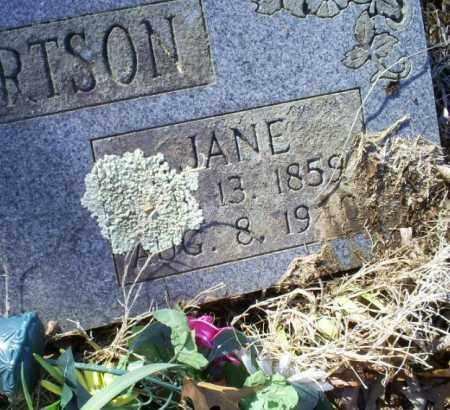 ROBERTSON, JANE - Conway County, Arkansas | JANE ROBERTSON - Arkansas Gravestone Photos