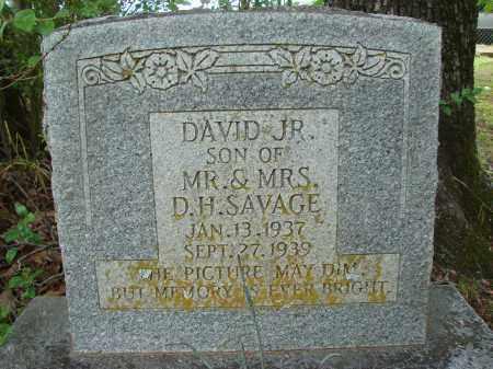 SAVAGE, JR., DAVID - Conway County, Arkansas | DAVID SAVAGE, JR. - Arkansas Gravestone Photos