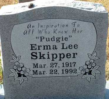 MCCLUNG SKIPPER, ERMA LEE - Conway County, Arkansas | ERMA LEE MCCLUNG SKIPPER - Arkansas Gravestone Photos