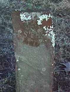 STELL, ROBERT - Conway County, Arkansas   ROBERT STELL - Arkansas Gravestone Photos
