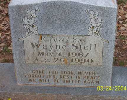 STELL, WAYNE - Conway County, Arkansas | WAYNE STELL - Arkansas Gravestone Photos
