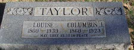 TAYLOR, LOUISE - Conway County, Arkansas | LOUISE TAYLOR - Arkansas Gravestone Photos