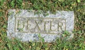 TODD, DEXTER ALEXANDER - Conway County, Arkansas | DEXTER ALEXANDER TODD - Arkansas Gravestone Photos