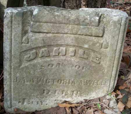 WELLS, JAHILE - Conway County, Arkansas | JAHILE WELLS - Arkansas Gravestone Photos