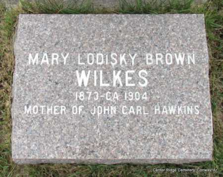 WILKES, MARY LODISKY - Conway County, Arkansas | MARY LODISKY WILKES - Arkansas Gravestone Photos