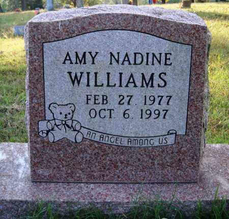 WILLIAMS, AMY NADINE - Conway County, Arkansas | AMY NADINE WILLIAMS - Arkansas Gravestone Photos