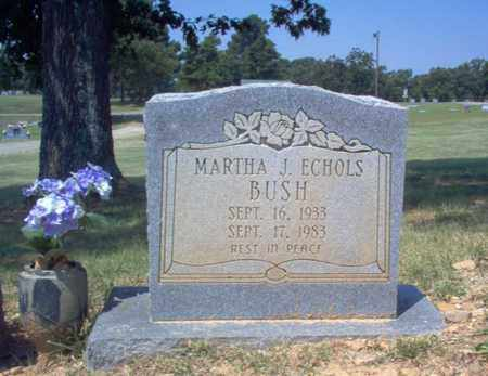 ECHOLS BUSH, MARTHA J - Craighead County, Arkansas | MARTHA J ECHOLS BUSH - Arkansas Gravestone Photos